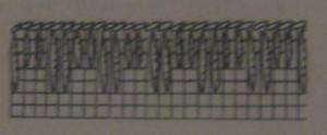 кружева 005